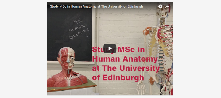 Study our MSc in Human Anatomy