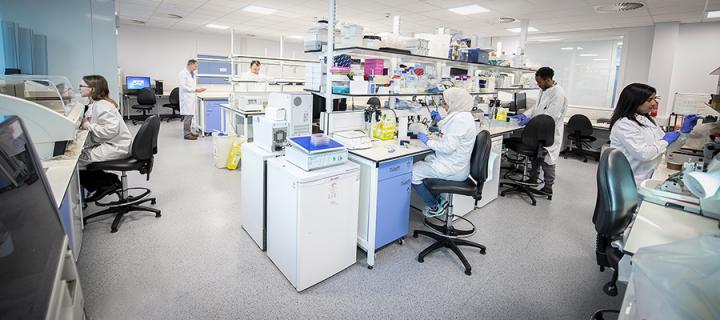 Institute of Genetics and Cancer research laboratory