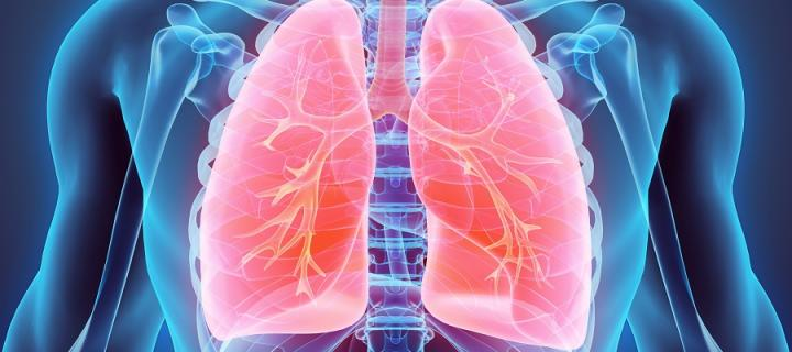 graphic showing a pair of lungs