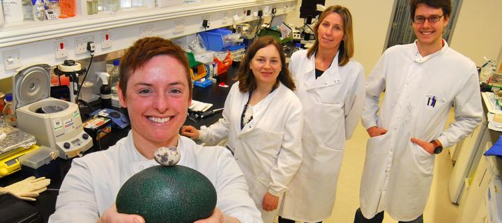 Research group members in the lab.