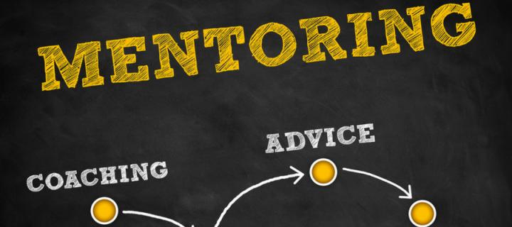 Diagram showing mentoring process