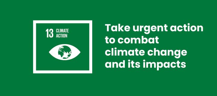 13 Climate Action: Take urgent action to combat climate change and its impacts
