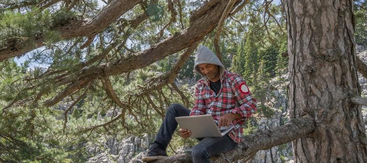 Man sitting in tree studying with laptp