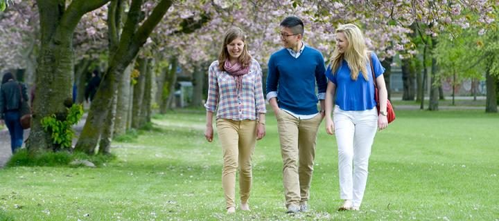 Three students walking in the Meadows