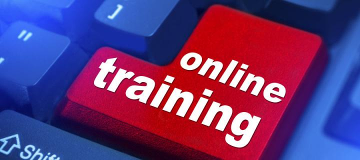 Image of a key with online training