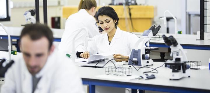 Undergraduate in biomedical lab