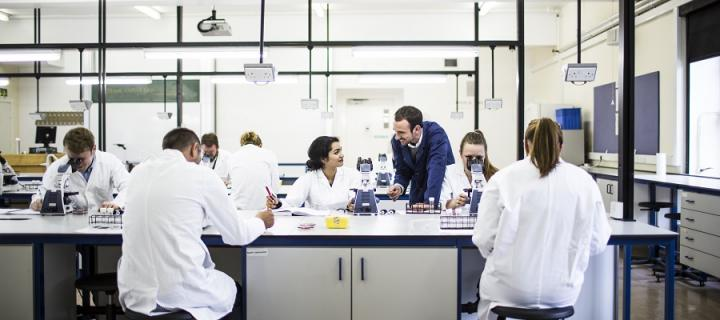 Biomedical Undergraduate students in the East West Laboratory