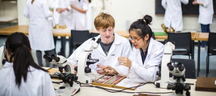 Biomedical undergraduates