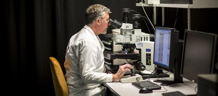 IGMM researcher