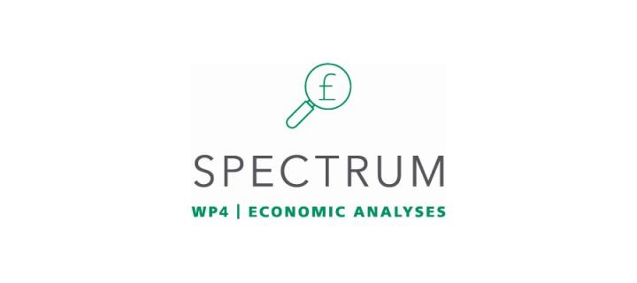 Icon with title of work package: economic analyses