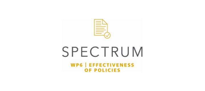 Icon with title of work package: effectiveness of policies