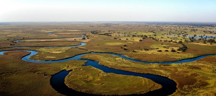 Arial image of a river in Botswana