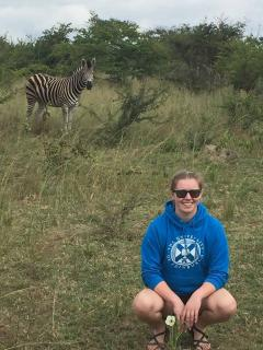 Alison went to Zimbabwe to work with cattle and met a Zebra on the way