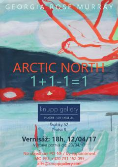 Poster for the Arctic North exhibition