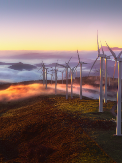 Wind turbines on a mountain at sunset, with clouds below the mountain peak