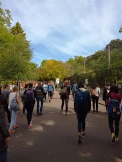 Students have the opportunity to visit Edinburgh Zoo before exam week.