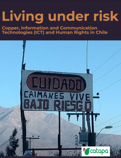 'Living Under Risk: Copper, Information and Communication Technologies' report cover