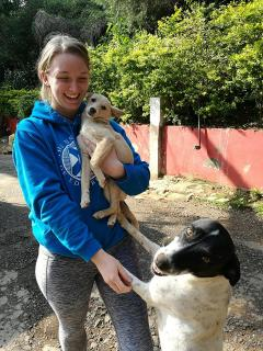 Rosie went to India to work on animal welfare and spay/neuter programmes