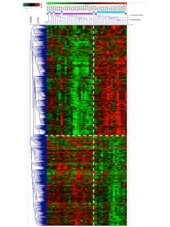 Two-class paired differential gene expression analysis tumour epithelial/stromal ILC samples dissected by Laser-capture