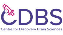 Centre for Discovery Brain Sciences Transparent Logo