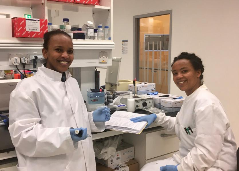 Ethiopian scientists spent five weeks at Roslin